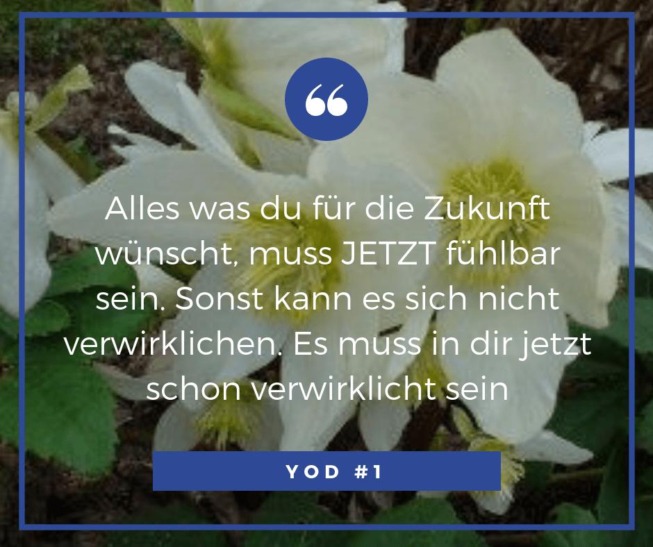 Yod Zitat 1